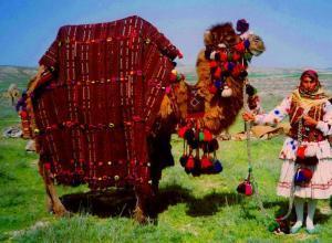 Khorasan Settentrionale