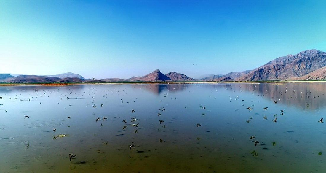 Khuzestan-Palude Miāngarān