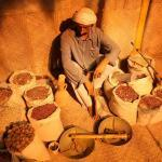 Hormozgan-Antropologjik Muzeu i Gjirit Persik