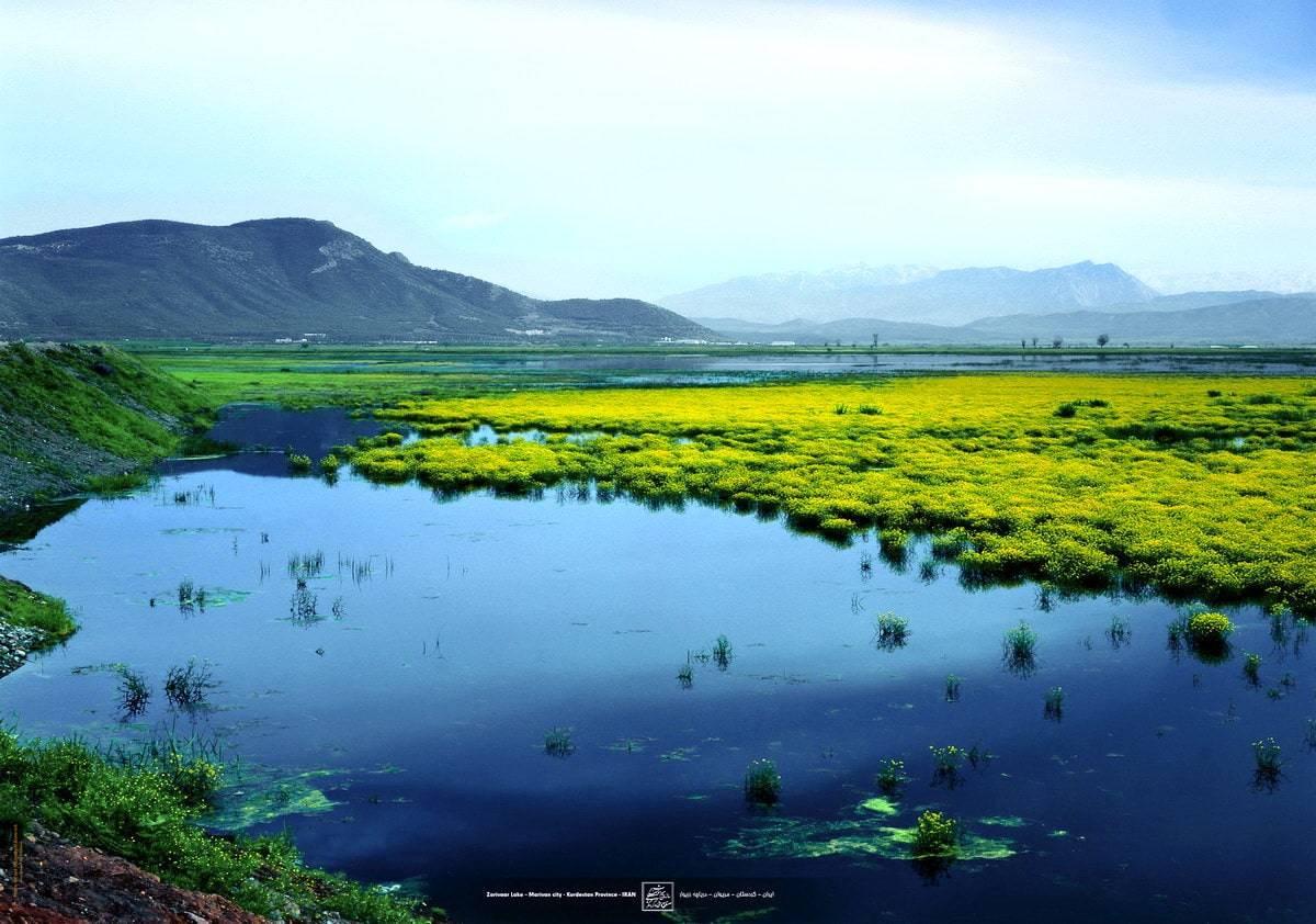 कुर्दिस्तान-ज़रीवर झील