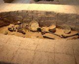 1_Tehran-संग्रहालय-पुरातत्व-ईरान-25 मिनट