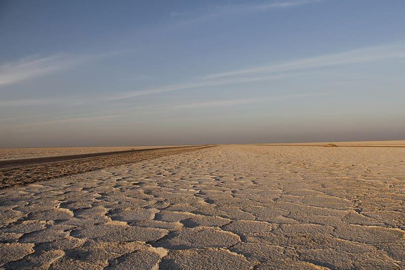 마란 ja 사막