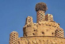 Esfahan-piccionaie-di-esfahan-7